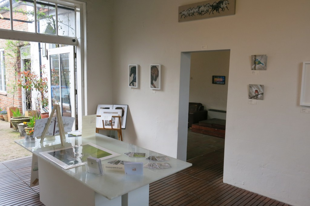 Susan Taylor Solo Art Exhibition at Alfriston