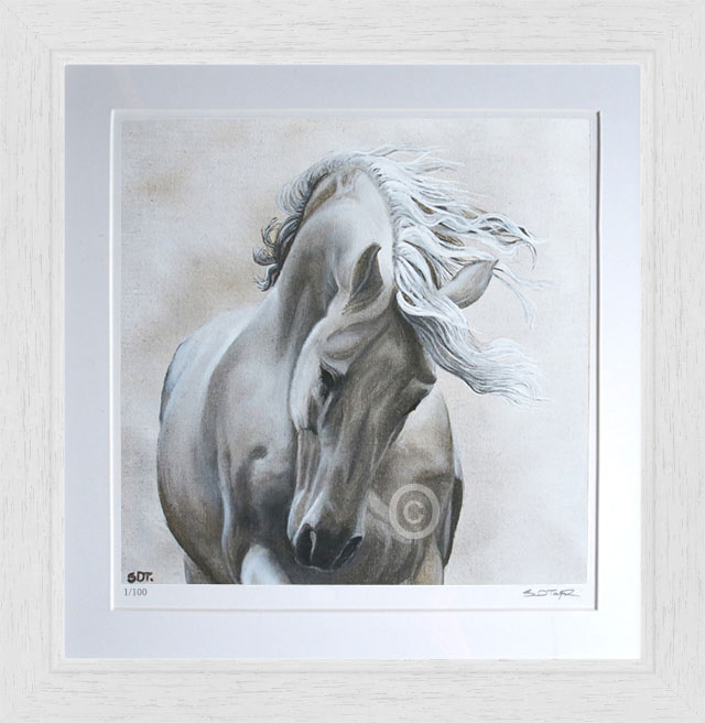 Spirit of the Horse 1 - Susan Taylor