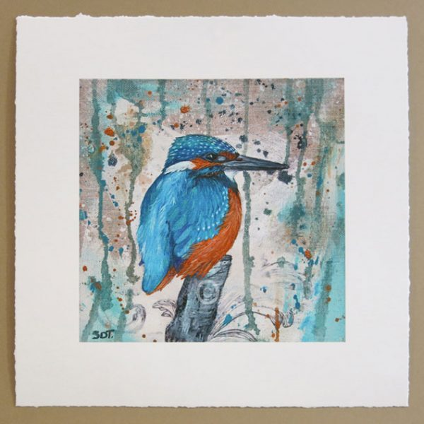 signed limited edition print of british kingfisher