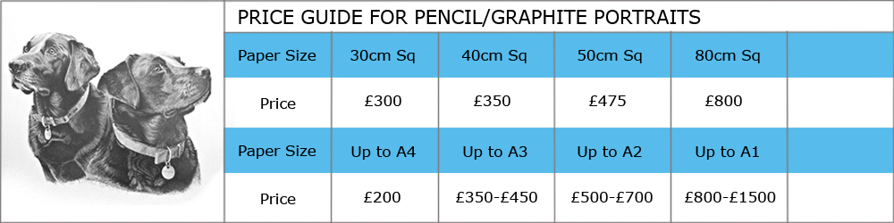 Price guide to commission Artist Susan Taylor to draw a picture in graphite or pencil
