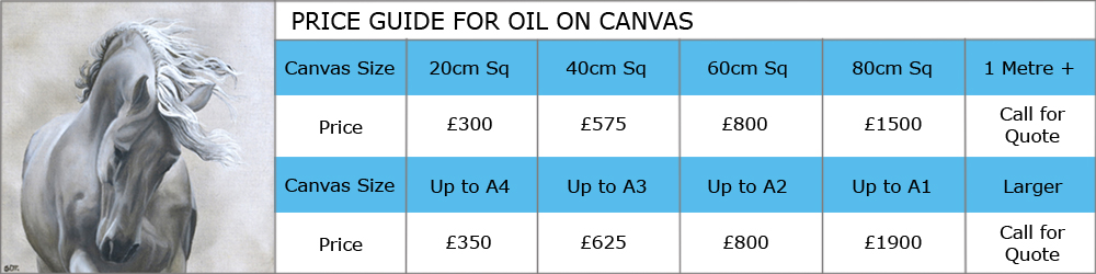 Price guide to commission Artist Susan Taylor to paint a picture on oil on Canvas