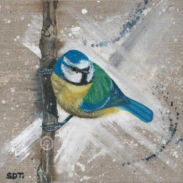 original oil paitning of blue tit