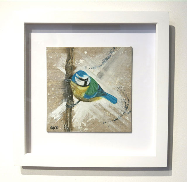 Little Blue Tit - Susan Taylor