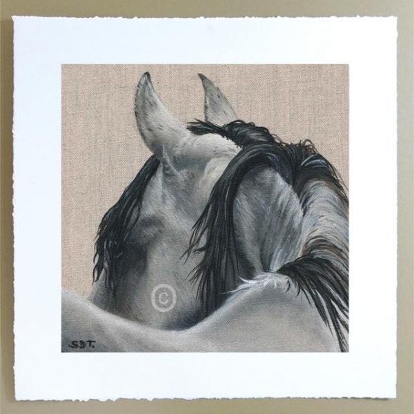 grey mare horse portrait limited edition signed print