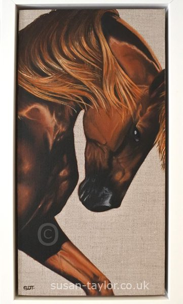 Chestnut thoroughbred horse portrait, oil on canvas and framed in white pan style frame