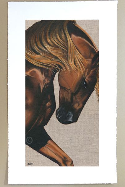 Chestnut thoroughbred horse portrait limited edition signd print unframed