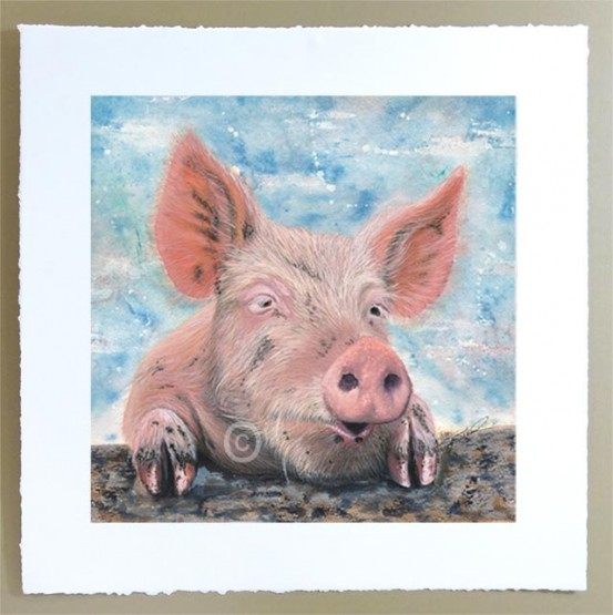 signed limited edition of a pink piget watercolour painting