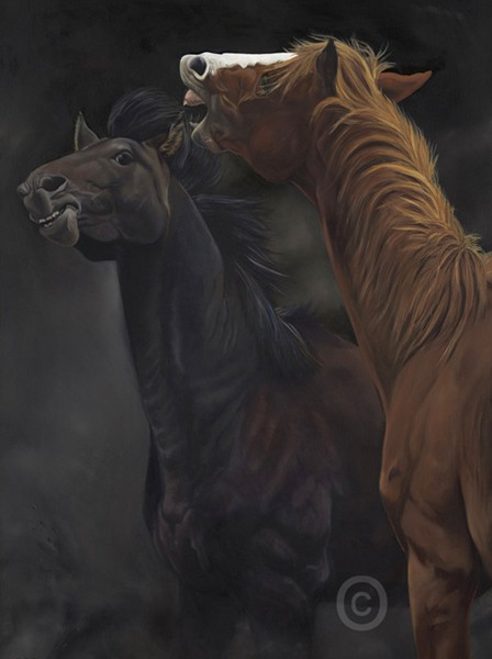 two thoroughbreds, horses fighting original oil painting on canvas 100x70x4cm