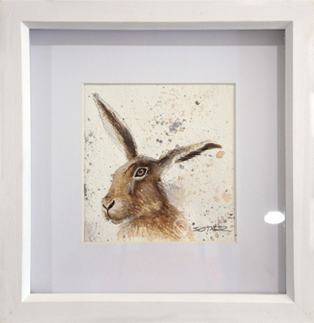 Mr Hare In Watercolour Susan Taylor