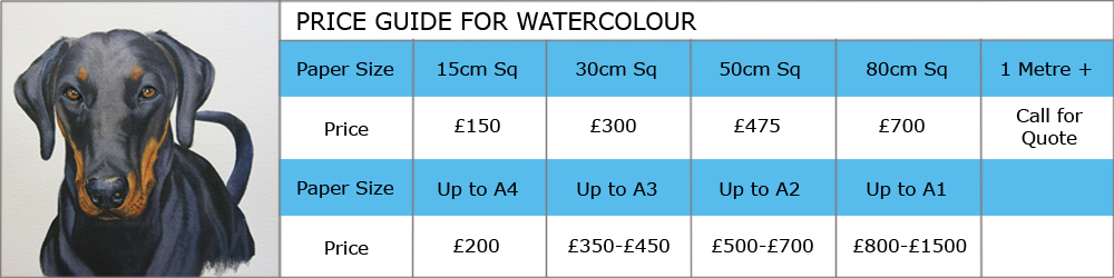 Price guide to commission Artist Susan Taylor to paint a picture in watercolour