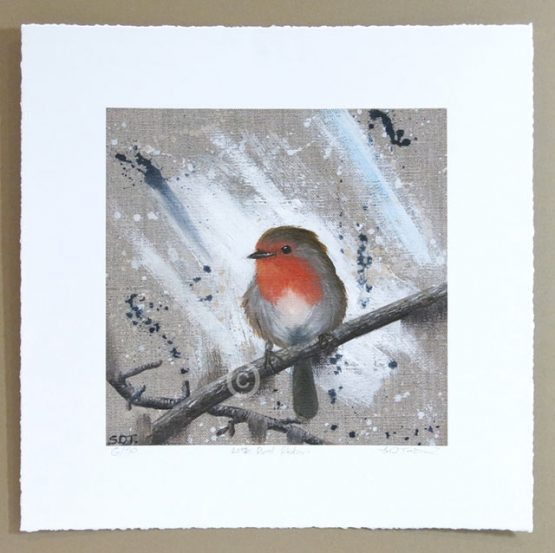 limited edition print of red robin bird