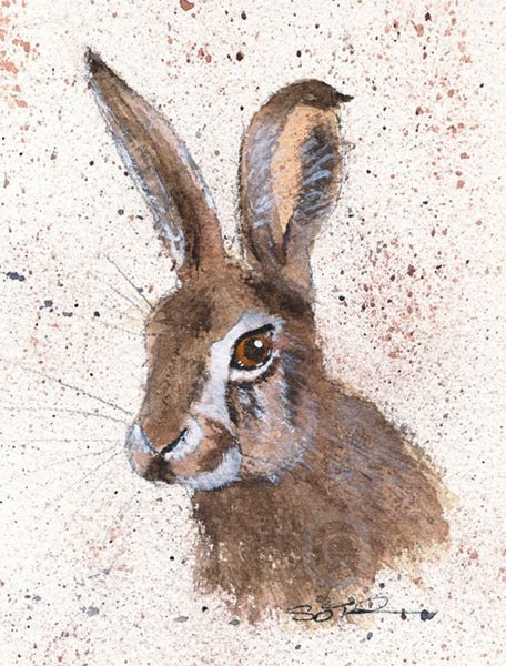Baby Hare in Watercolour