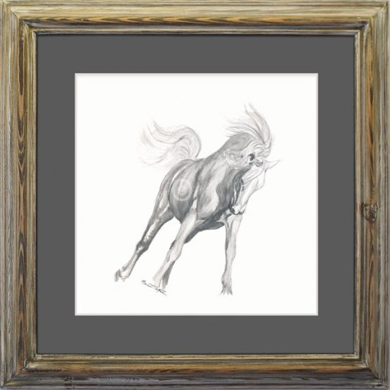 original drawing for a Andalusian horse in a dressage pose drawn with soluble lead pencil and framed with a gun metal gray mound and up-cycled pine frame with antiqued finish
