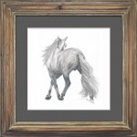 original drawing from the rear of an Andalusian horse - drawn with soluble lead pencil and framed with a gun metal gray mound and up-cycled pine frame with antiqued finish