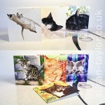 selection of 7 cat greeting cards depicting domestic cats for original watercolour paintings